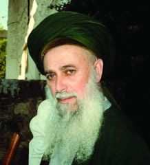 Mawlana Sheikh Nazim Al Haqqani Sufismo Brasil Naqshbandi (1)